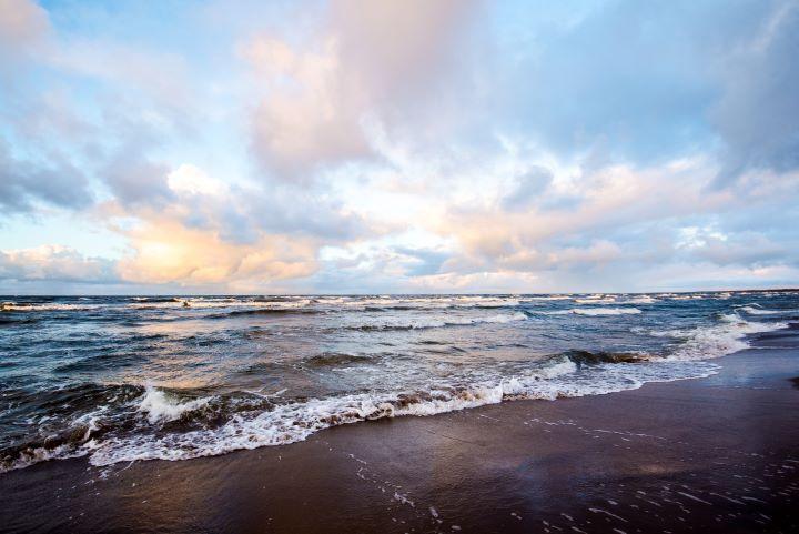 Ifin asiakkaat auttoivat poistamaan Itämerestä 110 000 kiloa levää tilaamalla laskunsa ja vakuutusasiakirjansa sähköisinä